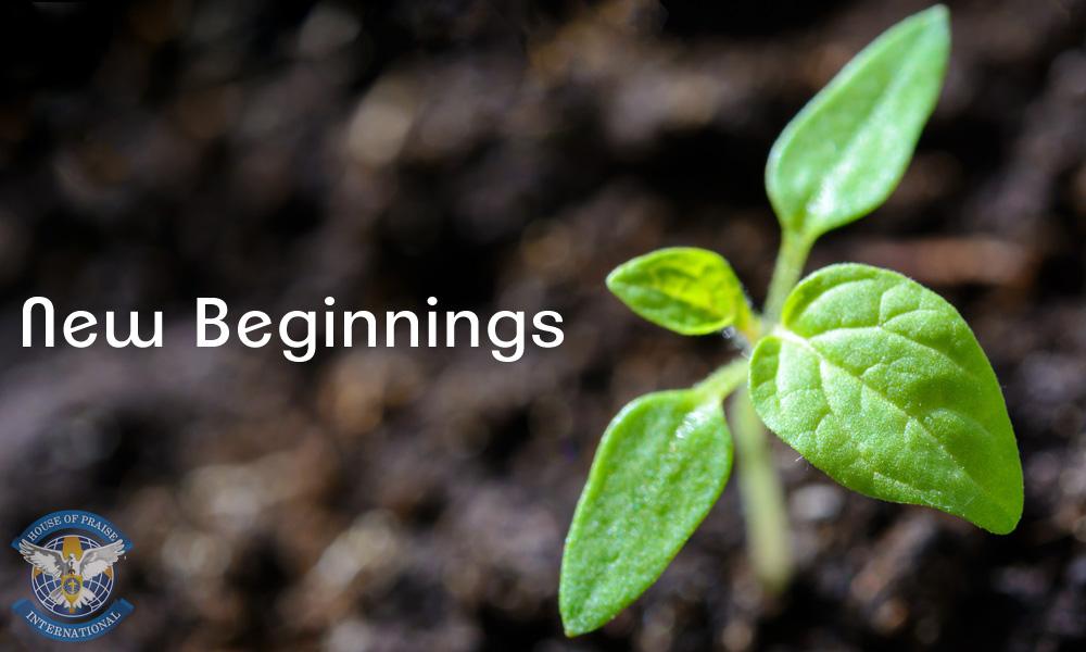 New Beginnings 2019
